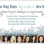 Winter Blogging Challenge
