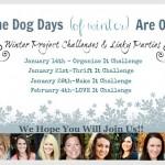 Winter Blogging Challenge