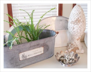 french-zinc-planter-fern-vintage-china-silver-Reed-and-Barton-dish-300x238